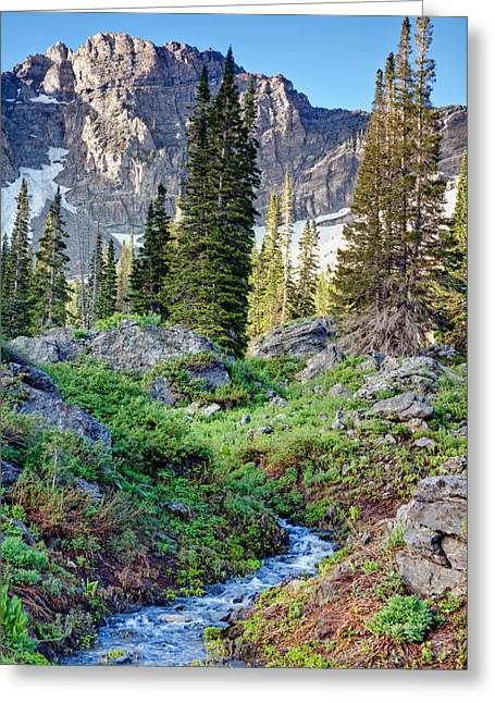 Wasatch Mountains Utah Greeting Card by Utah Images
