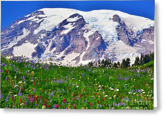 Greeting Card featuring the photograph #73 Blooms At Paradise by Jack Moskovita