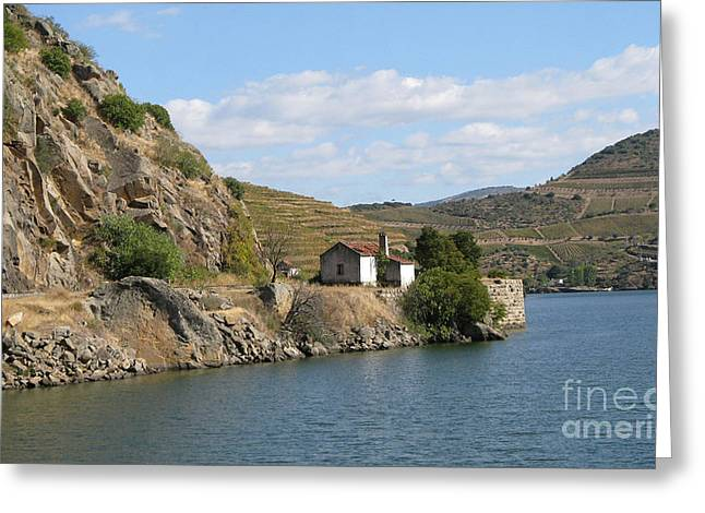 Douro River Valley Greeting Card