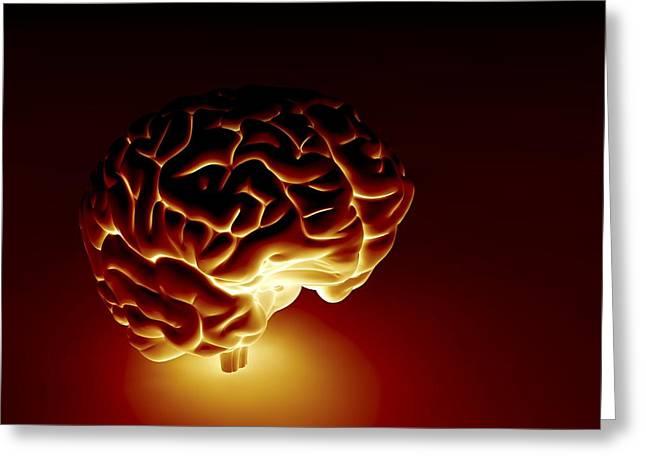 Human Brain, Artwork Greeting Card by Pasieka