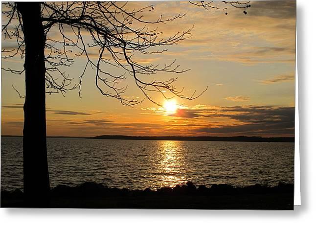 Sunset Chesapeake Bay Greeting Card by Valia Bradshaw