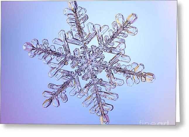 Snowflake Greeting Card by Ted Kinsman