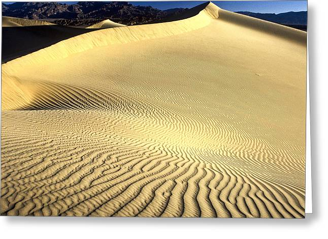 Sand Dune  Death Valley Greeting Card