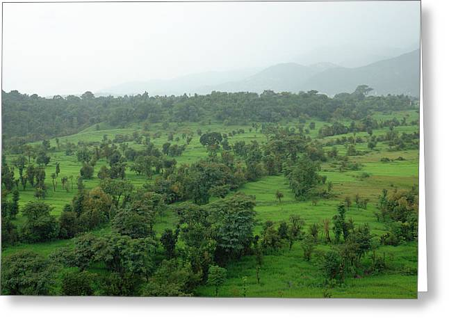 A Beautiful Green Countryside Greeting Card