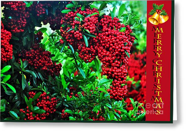 A Berry Merry Christmas Greeting Card by Kaye Menner