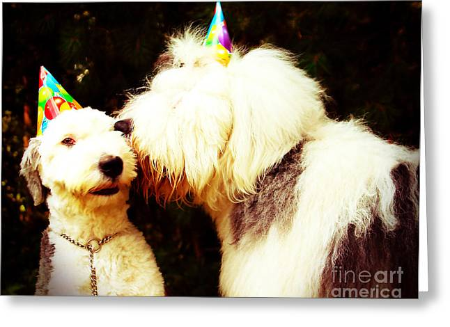 A Birthday Kiss Greeting Card by Alene Sirott-Cope