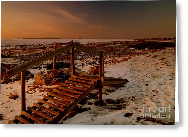 A Bridge To Nowhere Greeting Card by Michael Canning
