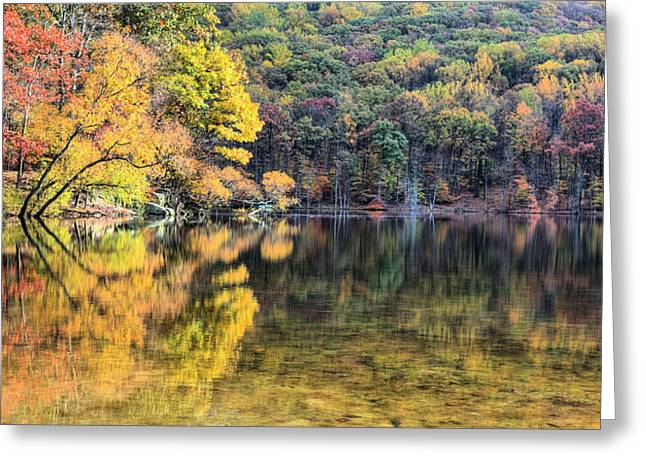 A Bright Spot Greeting Card by JC Findley