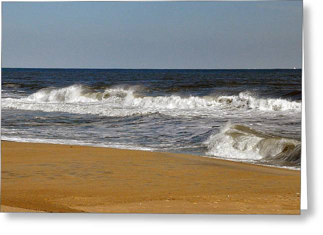 Greeting Card featuring the photograph A Brisk Day by Sarah McKoy