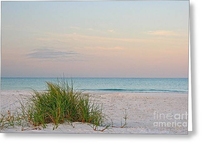 A Calm  Evening View Greeting Card by Joan McArthur