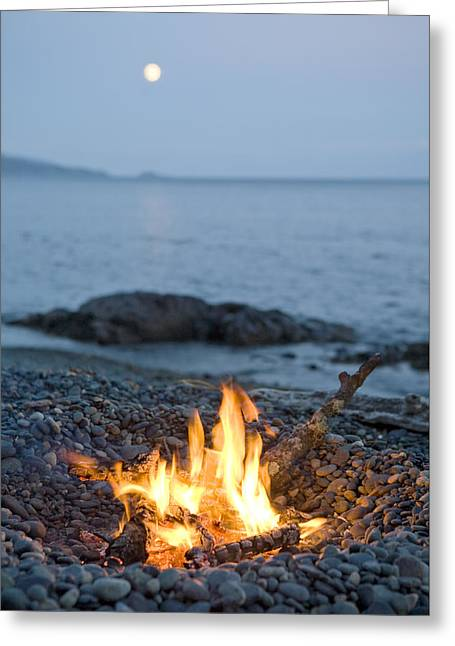 A Campfire On A Beach With A Full Moon Greeting Card by Taylor S Kennedy