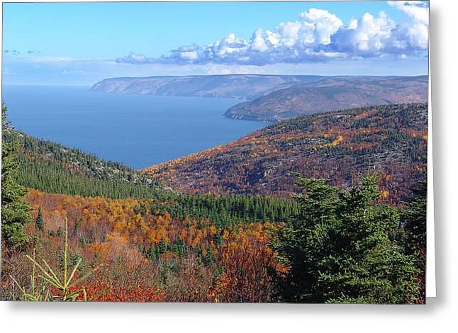 A Cape Breton Autumn Greeting Card by George Cousins