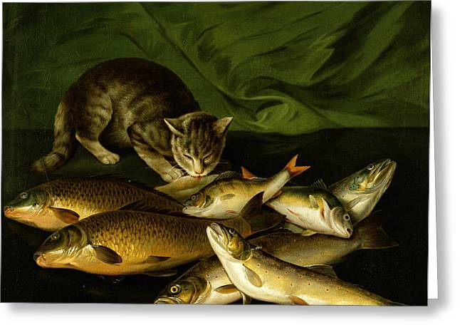 A Cat With Trout Perch And Carp On A Ledge Greeting Card