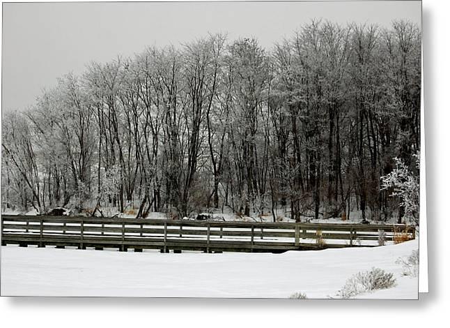 A Cold Day At Lake Zorinski. Greeting Card