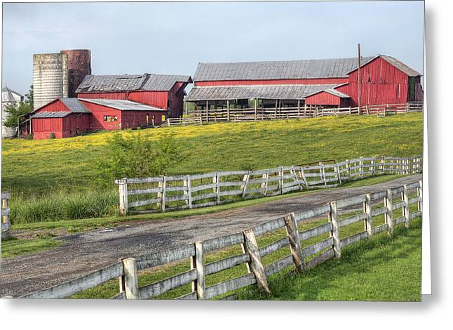 A Country Driveway Greeting Card by JC Findley