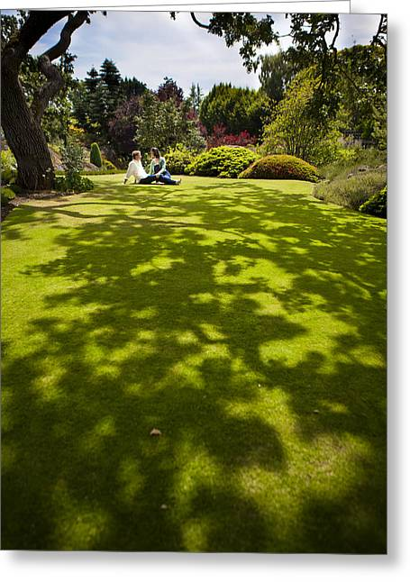 A Couple Sits On A Dappled Lawn Greeting Card by Taylor S. Kennedy