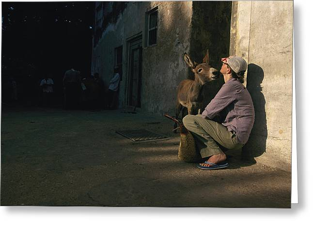 A Curious Donkey Inspects A  Woman Greeting Card