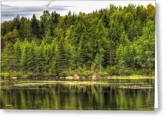 A Day In The Forest Of Maine Greeting Card by Gary Smith