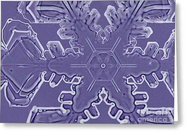 A Dendritic Snowflake Greeting Card