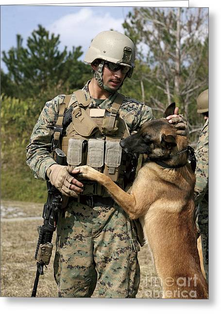 A Dog Handler Gives Positive Greeting Card by Stocktrek Images