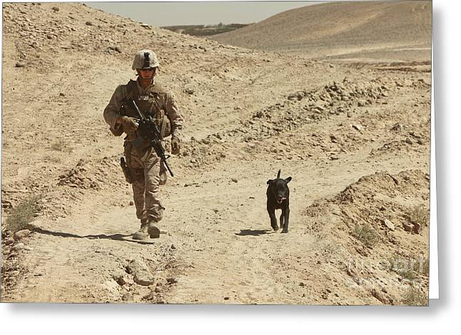A Dog Handler Walks With An Explosives Greeting Card by Stocktrek Images
