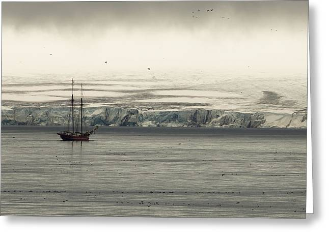 A Double-masted Sailboat Floats Near An Greeting Card by Norbert Rosing