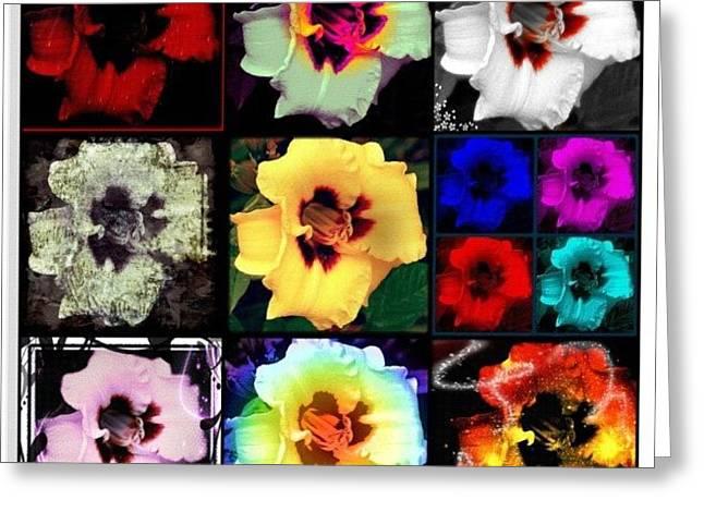 A Dozen Blooms Greeting Card