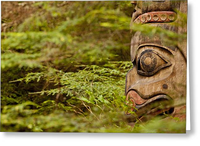 A Face In The Forest Greeting Card by Tim Grams