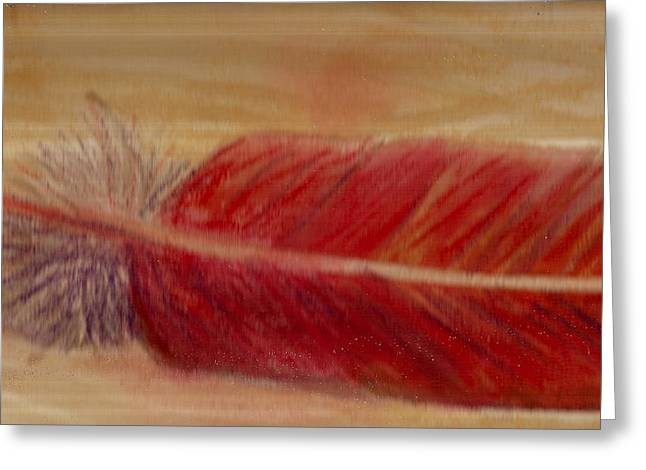 A Feather I Found Greeting Card by Anne-Elizabeth Whiteway