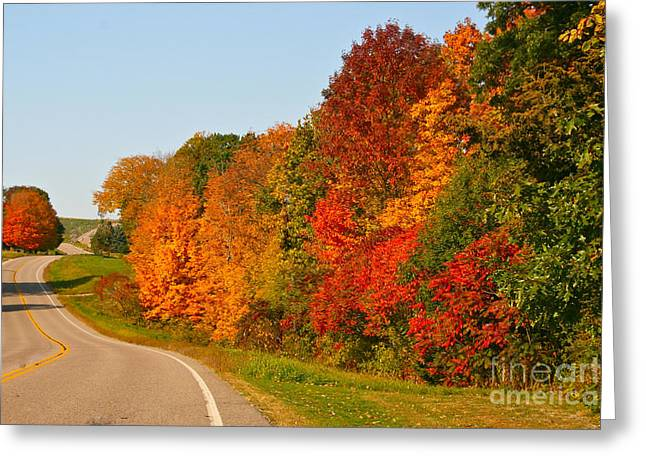 A Fine Fall Day Greeting Card by Joan McArthur