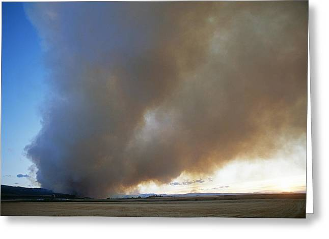 A Forest Fire Burns In The Gallatin Greeting Card by Gordon Wiltsie
