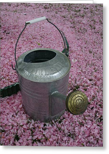 A Garden-watering Can On A Pink Sea Greeting Card