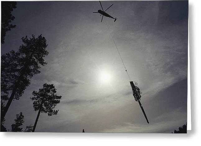 A Helicopter Lifts Cut Timber Greeting Card by Joel Sartore