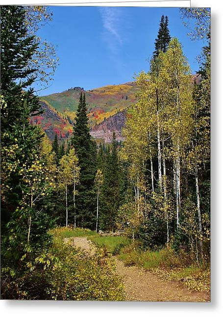 A Hike Through The Mountains Greeting Card by Bruce Bley