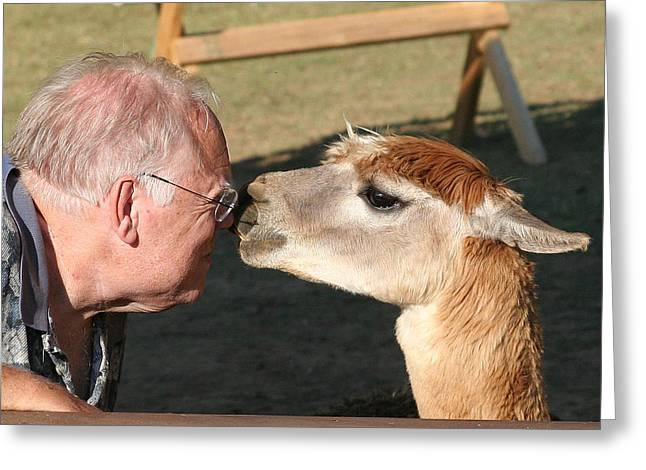 Greeting Card featuring the photograph A Kiss On The Nose by Paula Tohline Calhoun