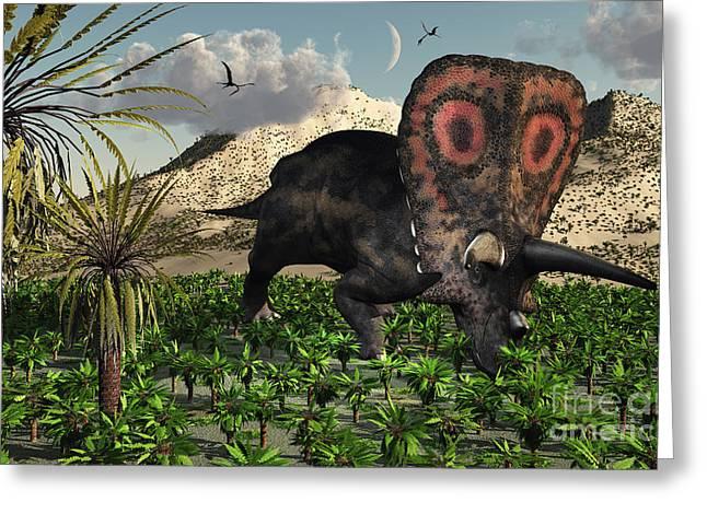 A Lone Torosaurus Dinosaur Feeding Greeting Card by Mark Stevenson
