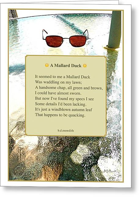 A Mallard Duck Greeting Card by Brian D Meredith