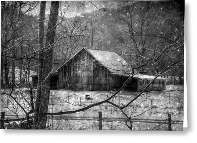 A Memory In Black And White Greeting Card by Christine Annas