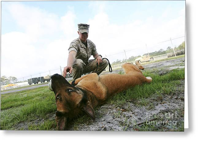 A Military Working Dog Handler Takes Greeting Card