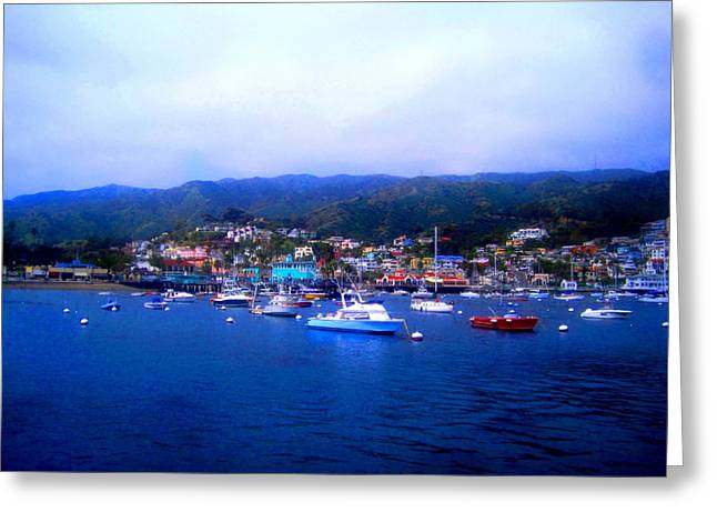 A Misty Morning In Avalon Harbor Greeting Card by Catherine Natalia  Roche