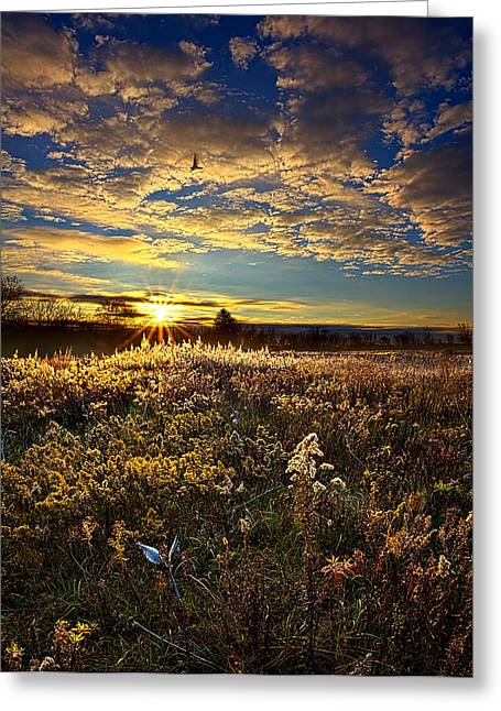 A New Beginning Greeting Card by Phil Koch