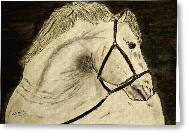 A Noble Horse. Greeting Card by Shlomo Zangilevitch