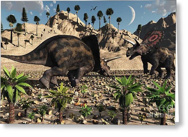 A Pair Of Torosaurus Dinosaurs Fight Greeting Card by Mark Stevenson