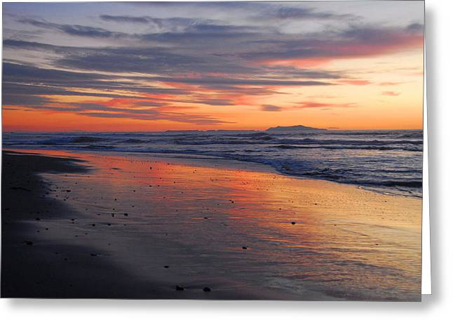 Greeting Card featuring the photograph A Passion For Purple by Lynn Bauer