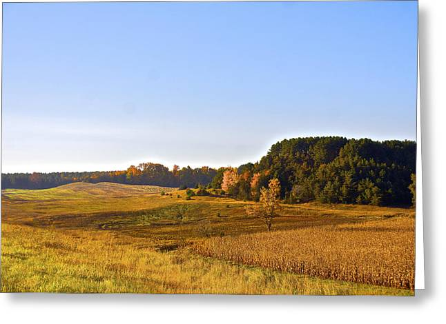 A Pastoral Scene Greeting Card by Sheryl Thomas