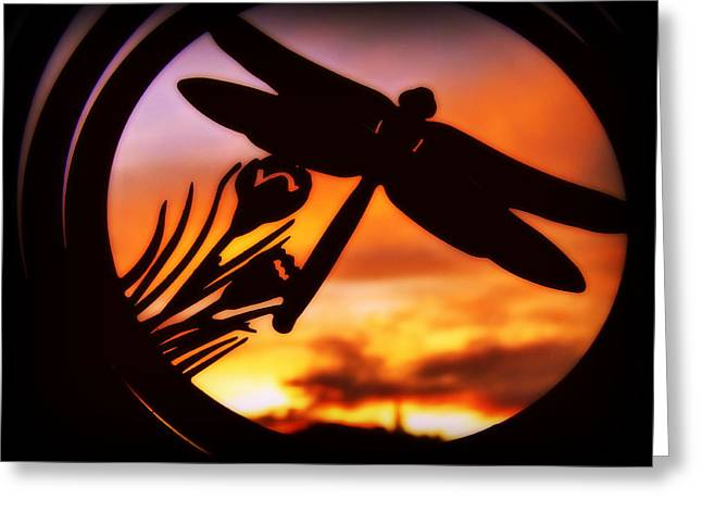 A Peaceful Dragonfly Sunset Greeting Card by Cindy Wright