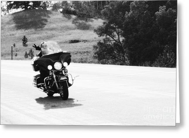 A Peaceful Ride Greeting Card