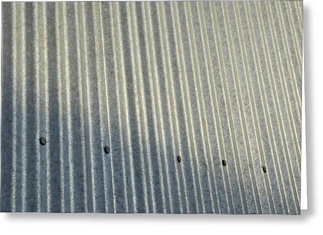 A Piece Of Metal Sheeting At A Sawmill Greeting Card by Joel Sartore