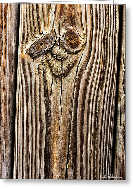 A Plank Face Greeting Card by Christopher Holmes