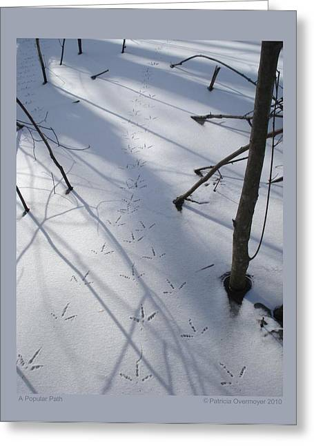 A Popular Path Greeting Card by Patricia Overmoyer